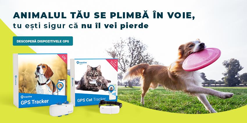 Dispozitive GPS Pentru Animale